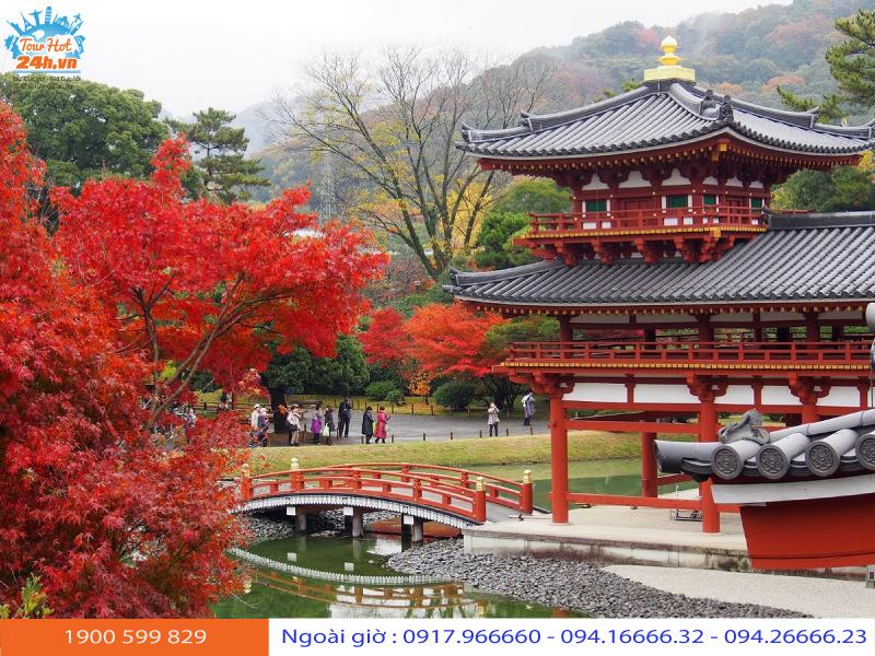 du lịch Nhật Bản mùa lá đỏ