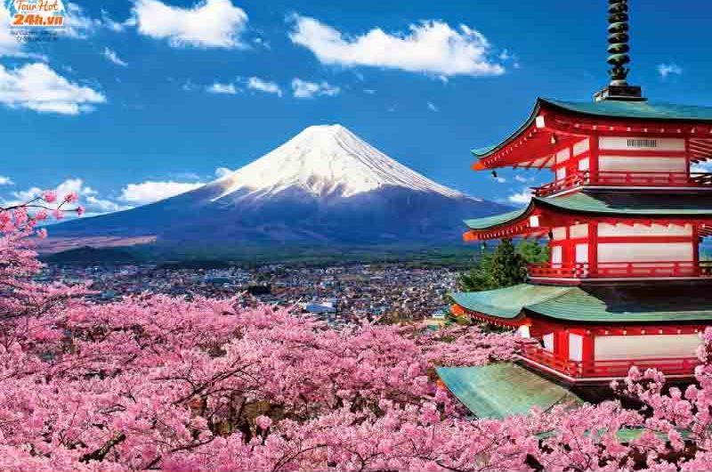 du lịch núi Phú Sĩ Nhật Bản
