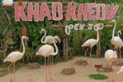 vuon-thu-Safari-Khao-Kheow