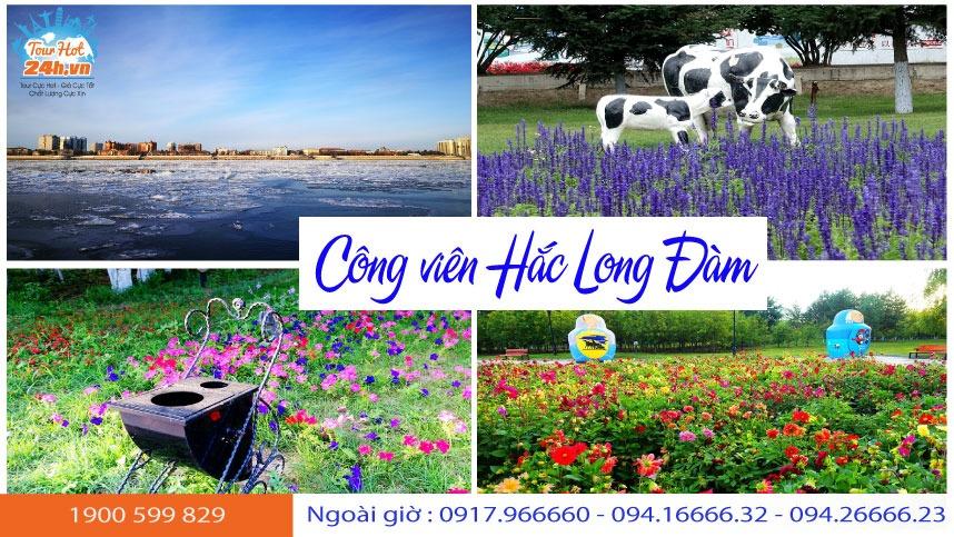 cong-vien-hac-long-dam