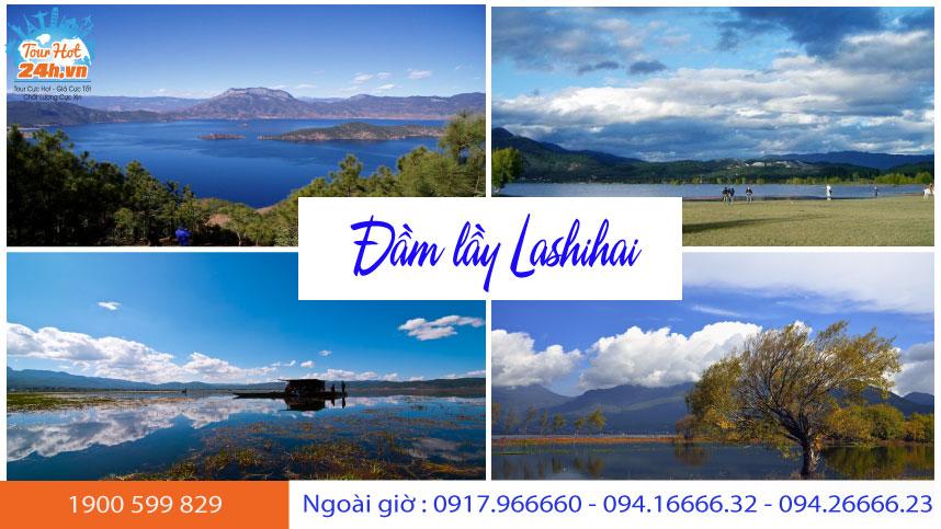 gioi-thieu-dam-lay-lashihai