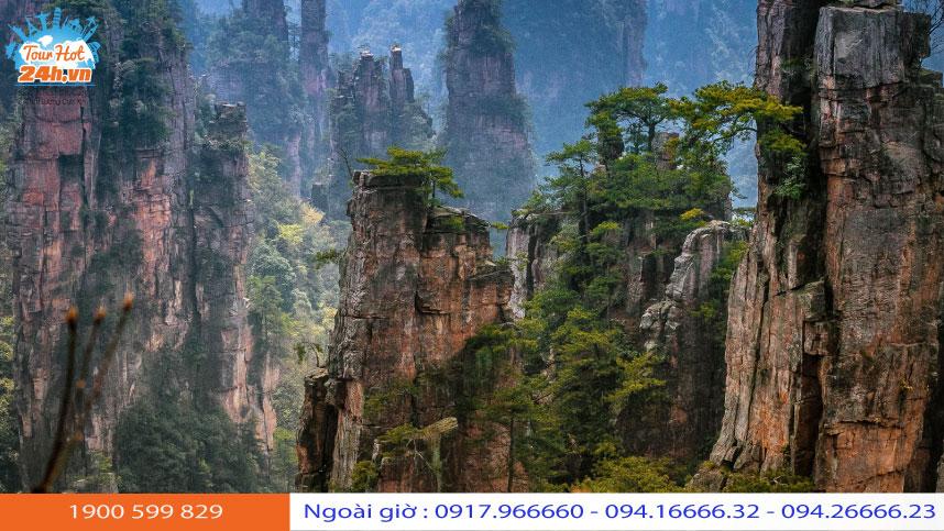 khu-thang-canh-Yuanjiajie-2-2