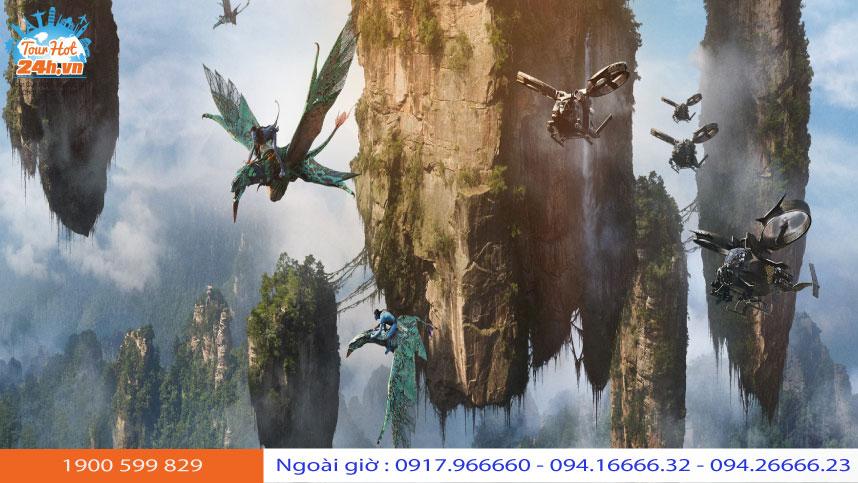 nhung-dieu-can-biet-truong-gia-gioi-3