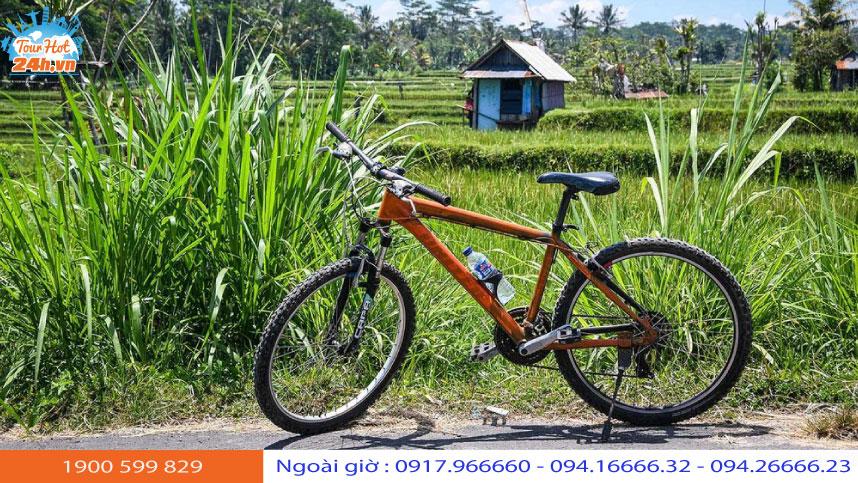 tour-xe-dap-nong-thon-2