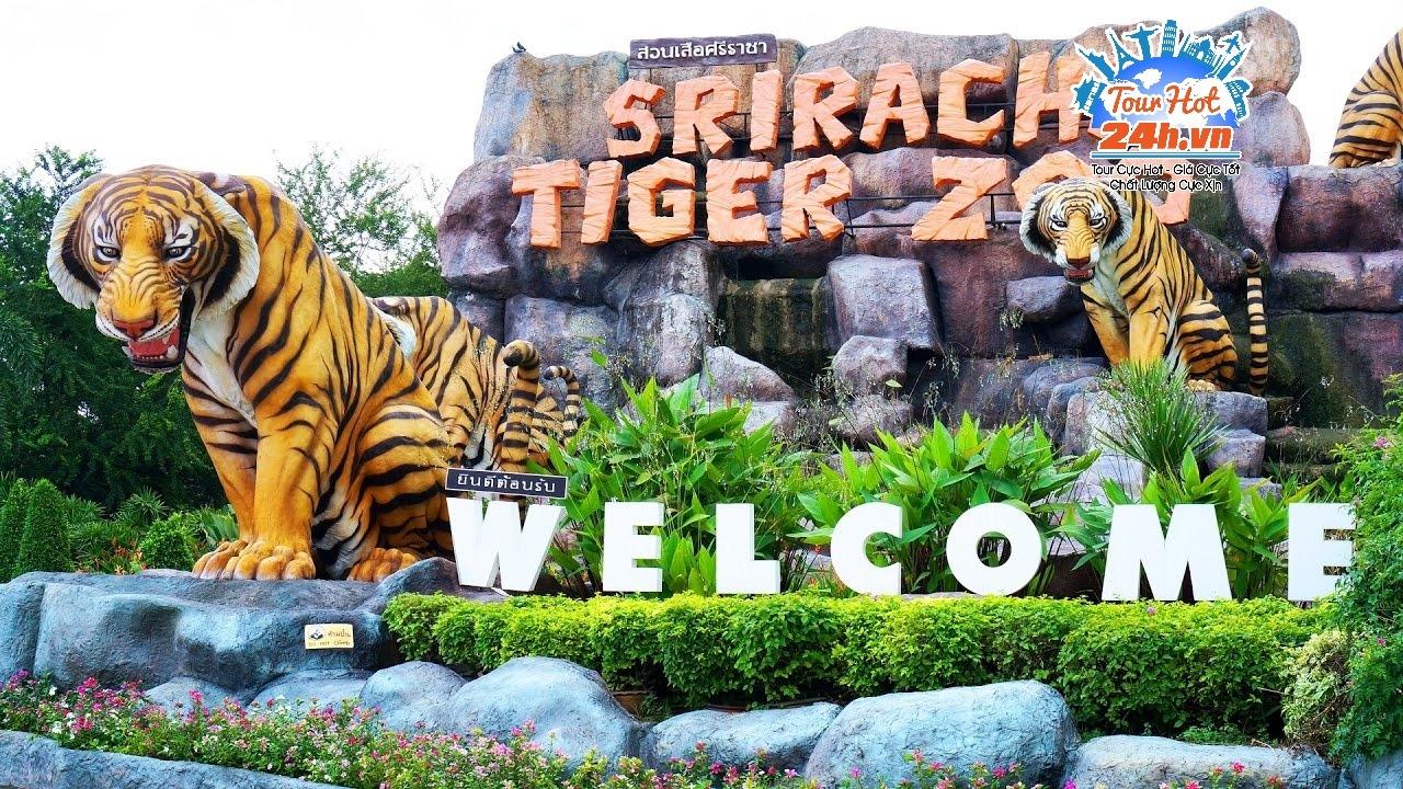 Sriracha-Tiger-Zoo
